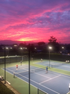 sunset-court